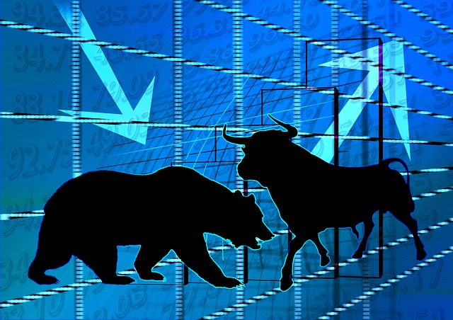 Bull and bear stock markets india